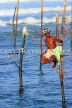 SRI LANKA, south coast, Ahangama area, Stilt Fisherman, SLK4779JPL