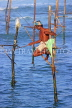 SRI LANKA, south coast, Ahangama area, Stilt Fisherman, SLK4780JPL