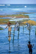 SRI LANKA, south coast, Ahangama area, Stilt Fishermen, SLK1680JPL