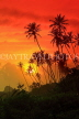 SRI LANKA, south coast, Ahangama area, sunset with coconut trees in silhouette, SLK4750JPL