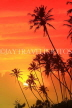 SRI LANKA, south coast, Ahangama area, sunset with coconut trees in silhouette, SLK4755JPL
