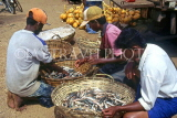 SRI LANKA, south coast, Ambalangoda, fishermen sorting catch into baskets, SLK341JPL