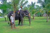 SRI LANKA, south coast, Bentota, child enjoying elephant ride, SLK1656JPL