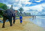 SRI LANKA, west coast, beach with boy on elephant ride, SLK2111JPL