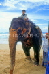 SRI LANKA, west coast, boy (tourist) on elephant ride, SLK2026JPL