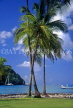 ST LUCIA, Marigot Bay (view from) and coconut trees, STL641JPL