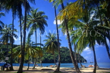 ST LUCIA, Marigot Bay, view from Marigot Bay, through coconut trees, STL640JPL