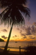 ST LUCIA, sunset and coconut tree, STL698JPL