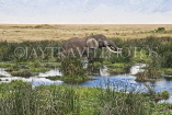 TANZANIA, Ngorongoro Crater, Elephant in waterhole, TAN799JPL