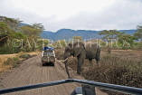 TANZANIA, Serengeti National Park, Elephant crossing road and safari jeeps, TAN817JPL