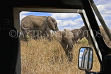 TANZANIA, Serengeti National Park, Elephants seen from safari jeep, TAN826JPL