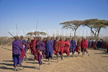 TANZANIA, Serengeti National Park, Massai Mara people dancing, TAN838JPL
