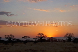 TANZANIA, Tarangire National Park, sunset, TAN854JPL