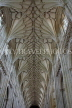 UK, Hampshire, WINCHESTER, Winchester Cathedral, elaborate nave ceiling, UK8049PL