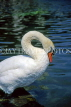 UK, LONDON, Hyde Park, Italian Water Gardens, Swan, UK10208JPL