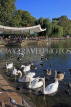 UK, LONDON, Hyde Park, Serpentine lake, lakeside cafe, and swans, UK11768JPL