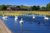 UK, LONDON, Kensington Gardens, Round Pond, and swans swimming, UK9089JPL