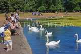 UK, LONDON, Kensington Gardens, Round Pond, people feeding swans, UK9087JPL