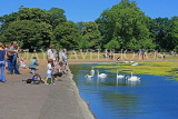 UK, LONDON, Kensington Gardens, Round Pond, people feeding swans, UK9088JPL