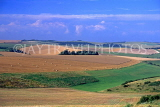 UK, Sussex, South downs, ROTTINGDEAN, cornfield and countryside scenery, UK5527JPL