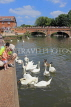 UK, Warwickshire, STRATFORD-UPON-AVON, River Avon, and feeding swans, UK25513JPL