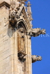 UK, Yorkshire, YORK, York Minster, gargoyles, UK2551JPL
