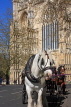 UK, Yorkshire, YORK, horse drawn carriage, by York Minster, UK3150JPL