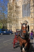 UK, Yorkshire, YORK, horse drawn carriage, by York Minster, UK3152JPL