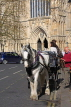 UK, Yorkshire, YORK, horse drawn carriage, by York Minster, UK3153JPL