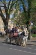 UK, Yorkshire, YORK, horse drawn carriage, tourists riding, UK3163JPL