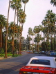 USA, California, LOS ANGELES, Beverly Hills street and palm trees,  US3901JPL