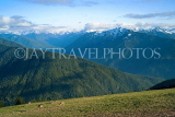USA, Washington, Olympic National Park, snowcapped peaks and deer, US42583JPL