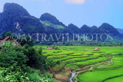 VIETNAM, rural scene, terraced rice fields, VT252JPL