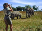ZIMBABWE, safari, viewing Rhino and Elephant, ZIM26JPL